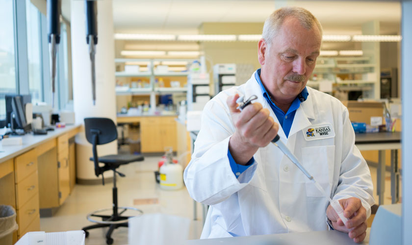 Foundation Distinguished Professor Bill Picking works in his laboratory.